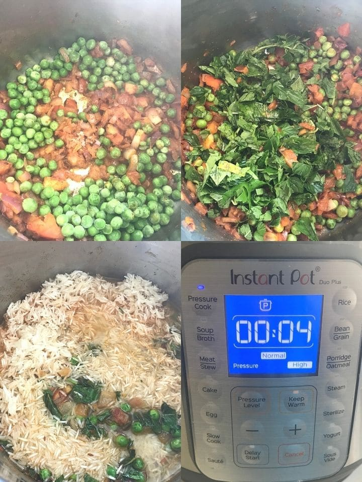Different food placed inside the instant pot, with mint rice