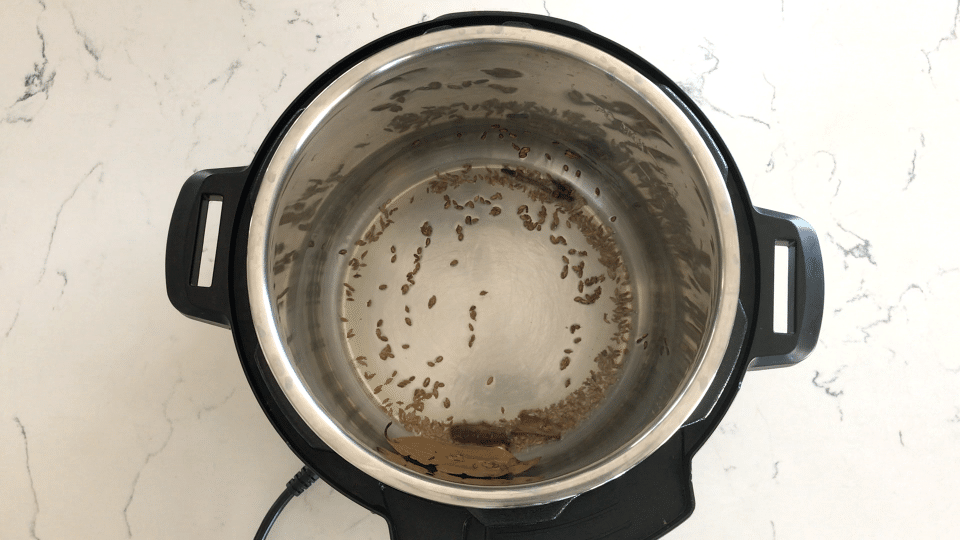 Instant Pot and spices